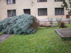 Následky vichřice z12. června 2010